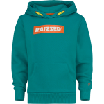 Raizzed hoodie New York green blue