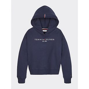 Tommy Hilfiger essential hooded sweater