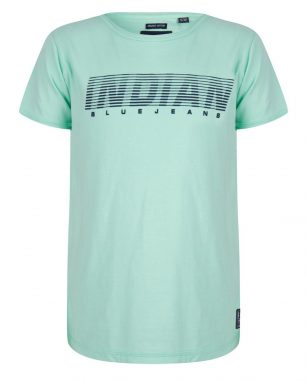 Indian blue t-shirt ss basic