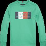 Tommy Hilfiger global stripe green